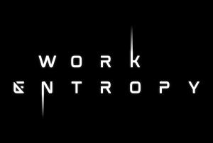 Work Entropy